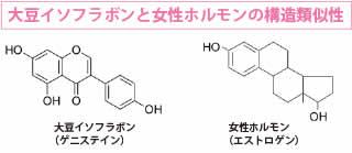 20160420_isofurabon-horumon